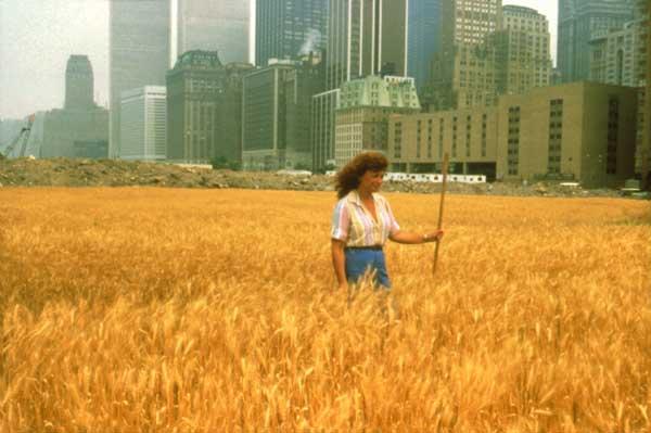 Agnes in Wheat Field