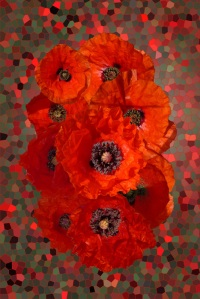 Artwork of Nigel Chaloner at Fine Art America
