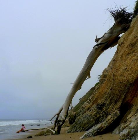 Hendrys Beach