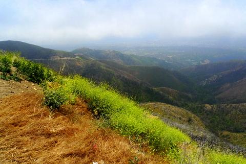View over Santa Barbara